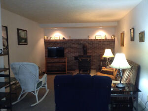 Fully furnished clean, lg 1b/r  apt