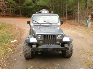 1995 Jeep Other Other