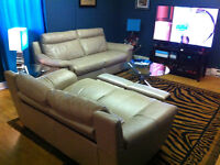 REAL Leather electric recliner sofa set couches