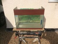 Sea Bray aquarium vivarium fish tank