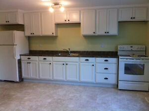 Large Open Concept, spacious new build - available Sept 1st