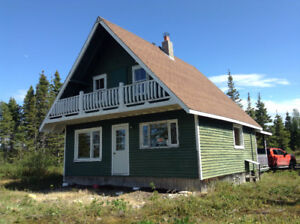 Ocean Front Cabin For Sale