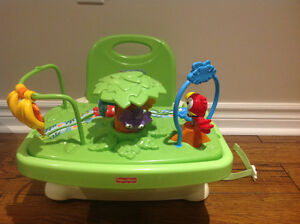 Fisher Price Rainforest Booster