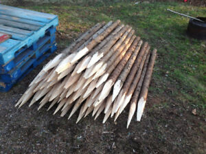 Spruce fence posts