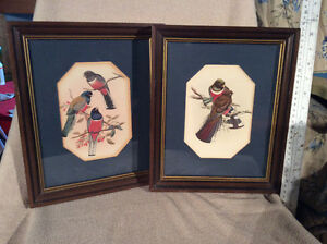 Pair of bird portraits wood frames