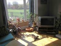 Double room for young female prof in beautiful house opposite Banstead Park