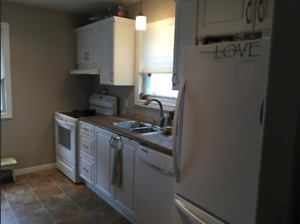 Deep River- 3 Bedroom All Utilities Inc Apartment