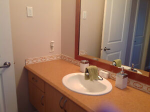 Arborite Counter Tops & Sinks