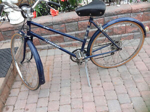 Wow this is a gorgeous road bike in excellent condition  $120