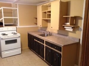 ONE BEDROOM LOWER DUPLEX-RIVERVIEW