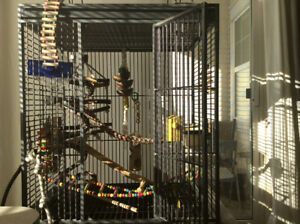 Parrot size bird cage for sale