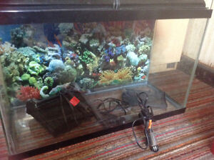 30 gallon fish tank with everything included