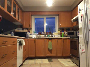 Maple Kitchen Cabinets suitable for 10x10' Kitchen