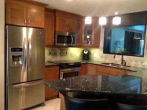 Gorgeous downtown condo for rent Meridian Plaza