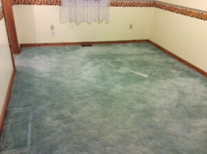 Green deep pile carpet for sale