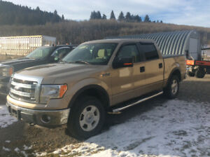 2014 FORD 150 XLT FOR SALE