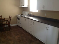 Spacious 2 Bedroom Basement Apartment for Rent in East End