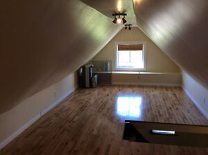 carpet free, hardwood, steps to downtown & LRT Ion Kitchener / Waterloo Kitchener Area image 7