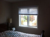 Collingwood Condo w. 1bed / private Bath open for Roomate
