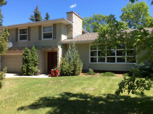 Perfect family home in Greystone Heights