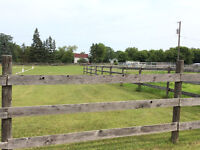 LARGE BARN WITH 17 PADDOCKS for a horse a business