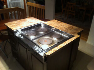 Plaque de cuisson avec fan intégré