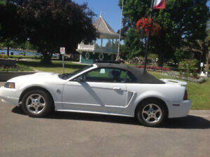 2004 Ford Mustang Convertible Anniversary Edition