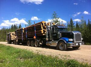 CTL logging truck driver need for Prince George area Prince George British Columbia image 1