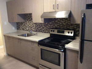 Available Immediately. 2 bedroom newly completely renovated.