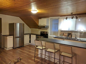 ONE of a Kind, Pet Friendly 2 BR + a Loft & 2 Private Decks Kitchener / Waterloo Kitchener Area image 3