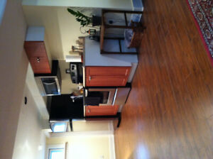 Furnished Basement suite-Lacombe