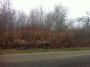 4.5 Acres Located 15 Minutes from St Stephen -  $9990