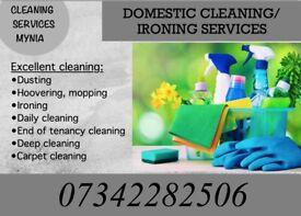 Cleaning and ironing services Radlett, Borehamwood, Elstree, Hendon, Brent Cross