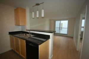 Beautiful  1 Bedroom, 1 Bath , Tower Apart. ! Avail June
