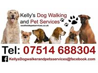 Kelly`s Dog Walking and Pet Services