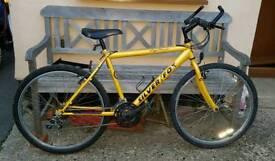 Gents silver fox bike