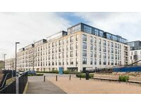 *BRAND NEW High Specification 1 Bedroom Flats to rent in NEW Riverside development - NO AGENCY FEES*