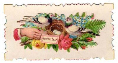 Vintage Beautiful Victorian Hidden name card Absent but Dear Love birds nest