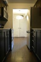 Stunning Renovated Condo Style Renovated 1 Bedroom Apt Suite