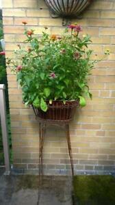 Wrought Iron Planter set