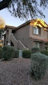 VACATION RENTAL IN MESA AZ 85205