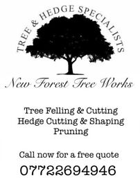 Tree cutting tree surgeon services hedge trimming cutting garden