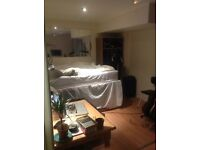 Short term sublet of double room in Clapton, Hackney. 11/12-10/1, All bills included.
