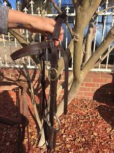 Full size leather bridle Bairnsdale East Gippsland Preview
