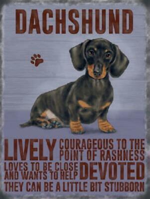 Vintage Style Dachshund Sausage Dog Metal Wall Kitchen Sign Plaque 15 x 20 cm