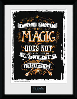 - HARRY POTTER WANDS OUT MAGIC PICTURE FRAME 16x12 INCH - OFFICIAL GIFT