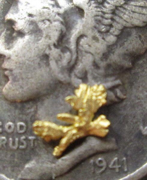 Rare Native Gold Nugget Specimen Nogal ,NM