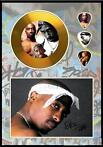 2 Pack, Two Pack, Tupac Shakur plectrum golddiscdisplay