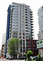 Gorgeous 3 1/2 in downtown--Lease transfer for August