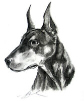 Learn to Draw & Paint Animals for Kids 8-12